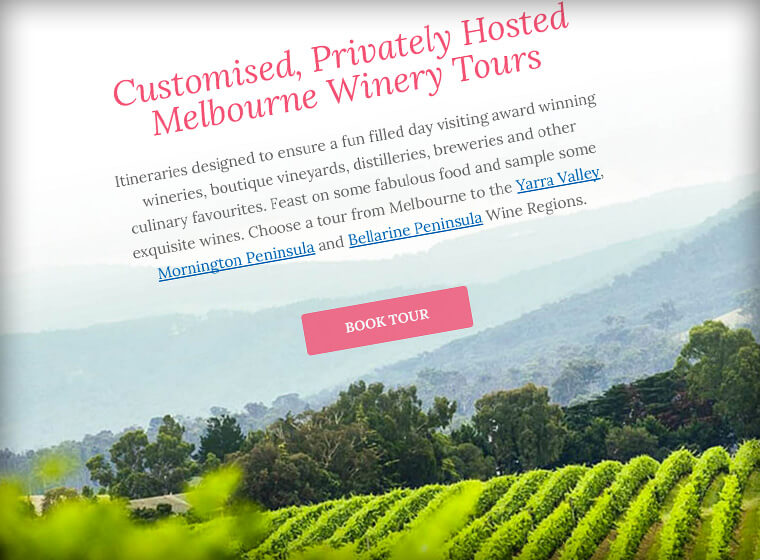 Vine 2 Vine - Winery Tours